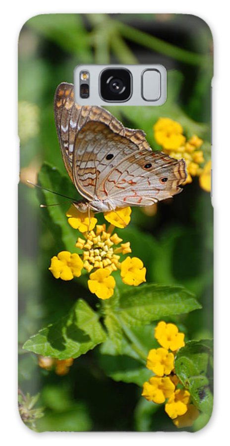 Butterfly Galaxy S8 Case featuring the photograph 5 Yellow Flowers And A Buttefly by Rob Hans