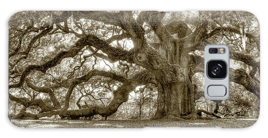 Live Oak Galaxy S8 Case featuring the photograph Angel Oak Live Oak Tree by Dustin K Ryan