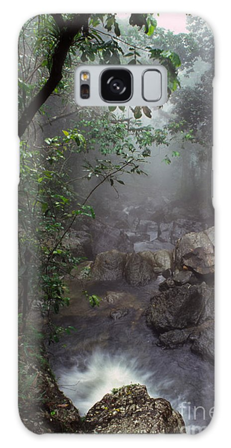 Puerto Rico Galaxy S8 Case featuring the photograph Misty Rainforest El Yunque by Thomas R Fletcher