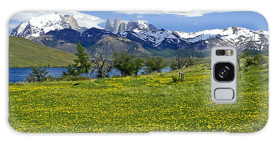 Patagonia Galaxy S8 Case featuring the photograph Springtime In Torres Del Paine by Michele Burgess