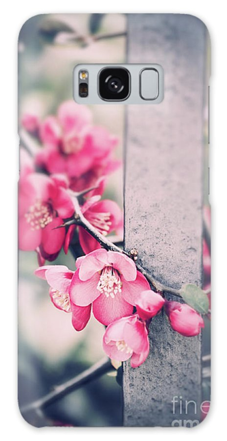 Spring Galaxy S8 Case featuring the photograph A Delicate Spring by Silvia Ganora