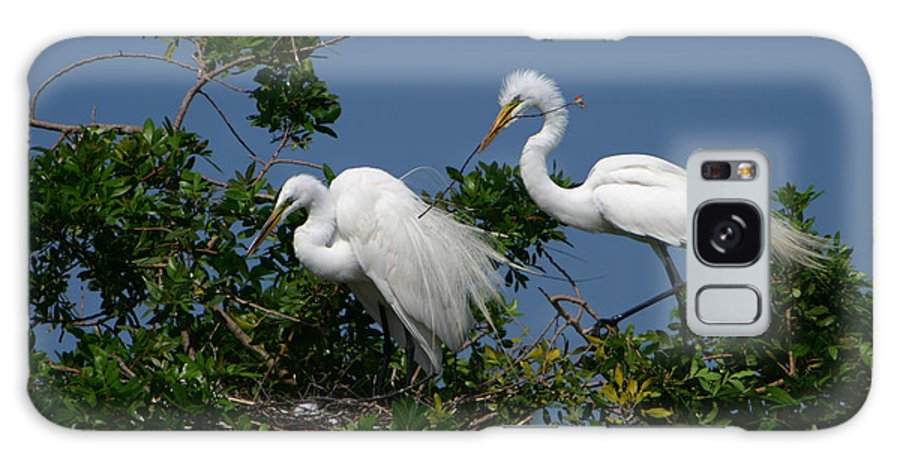 Great White Egret Bird Feathers Animal Wildlife Florida Photograph Photography Galaxy S8 Case featuring the photograph A Helping Beak by Shari Jardina
