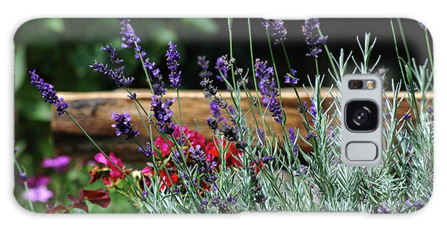 Lavender Galaxy S8 Case featuring the photograph A Little Lavender by Lori Tambakis