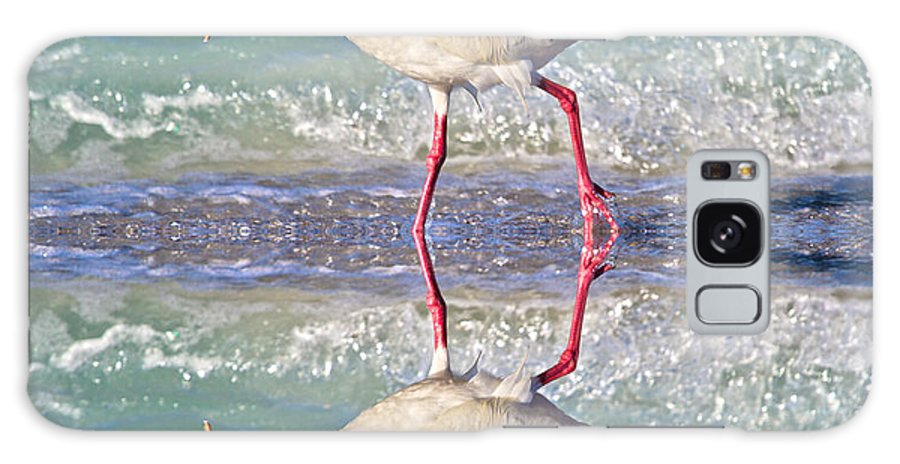 Ibis Galaxy S8 Case featuring the photograph A Reflective Walk by Betsy Knapp