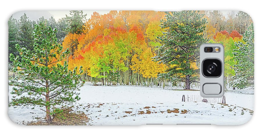 Fall Colors Galaxy S8 Case featuring the photograph A Roadside Neve by Bijan Pirnia