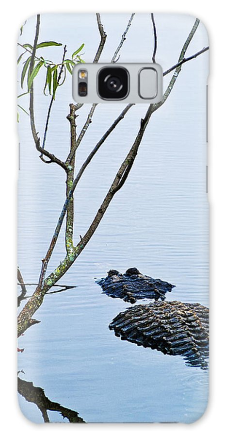 Alligator Galaxy S8 Case featuring the photograph A Rough Patch by Christopher Holmes