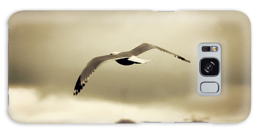 Seattle Galaxy S8 Case featuring the photograph A Seagull Call by Kerry Langel