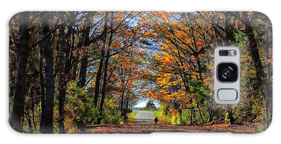 Landscape Galaxy S8 Case featuring the photograph A Stroll Through Autumn Colors by Marcia Lee Jones