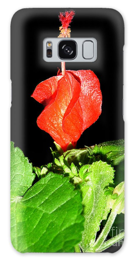 Nature Galaxy Case featuring the photograph A Swirl Of Red by Lucyna A M Green