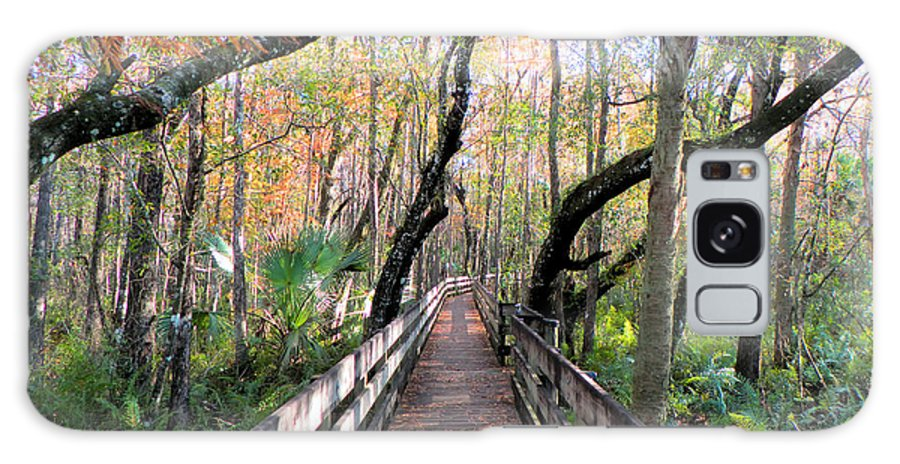 Woods Galaxy S8 Case featuring the photograph A Walk In The Woods by Rosalie Scanlon