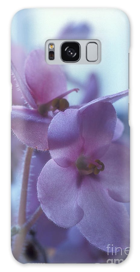 African Galaxy Case featuring the photograph African Violets in the Window by Keith Gondron