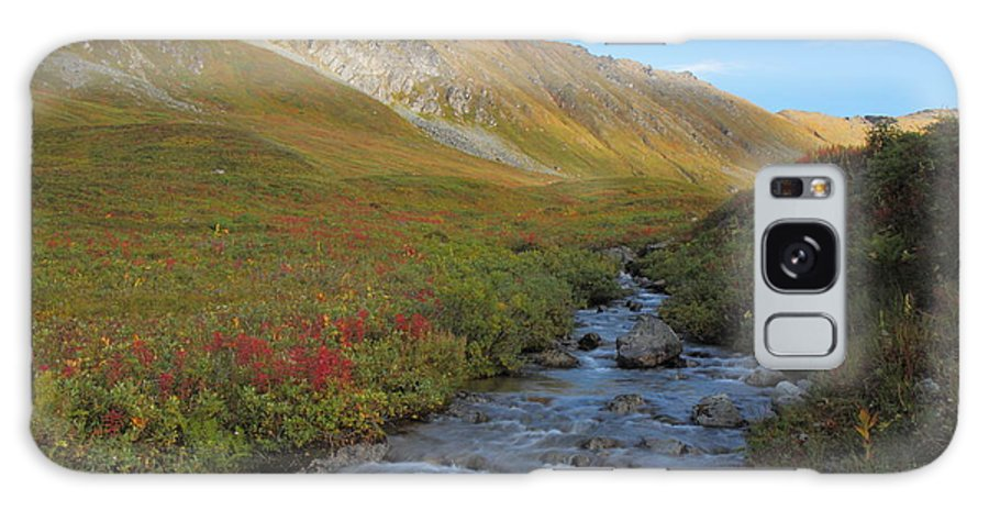 Alaska Galaxy S8 Case featuring the photograph Alaska Fireweed And Willow Creek Along Hatcher Pass Road by Steve Wolfe