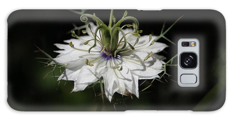 Nigella Galaxy S8 Case featuring the photograph Alien Flower by Jean Booth