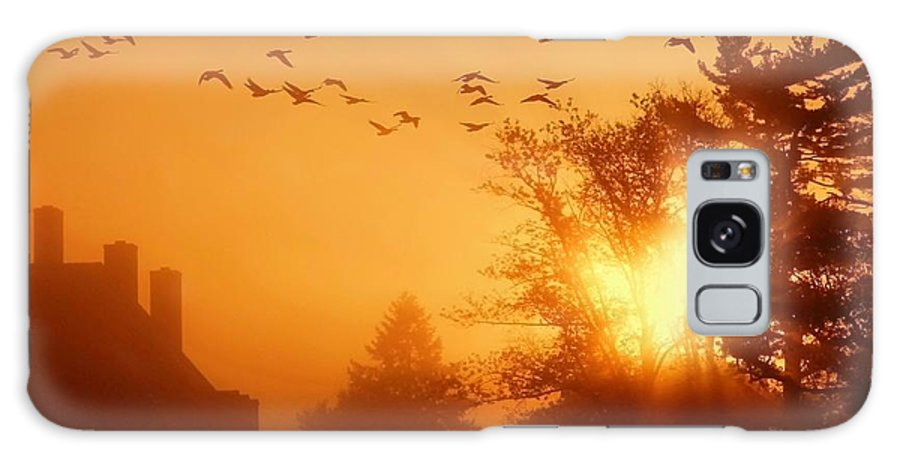 Sunrise Galaxy Case featuring the photograph Alive by Mitch Cat