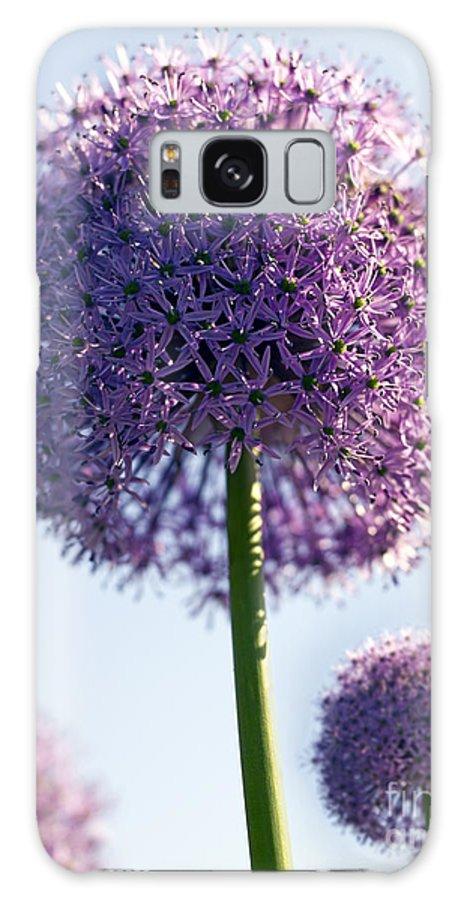 Allium Galaxy S8 Case featuring the photograph Allium Flower by Tony Cordoza