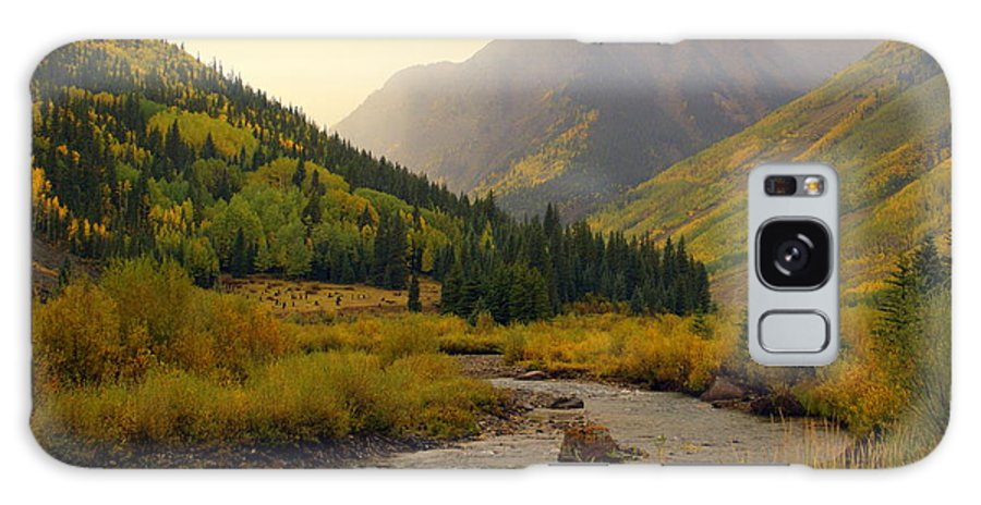Colorado Galaxy S8 Case featuring the photograph Alpine Loop Fall by Marty Koch