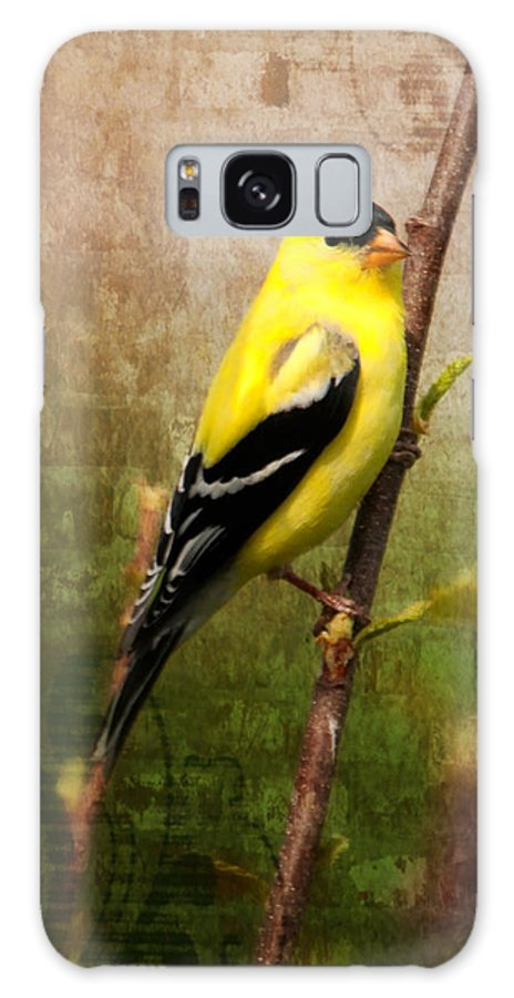 American Goldfinch Galaxy S8 Case featuring the photograph American Goldfinch by Al Mueller