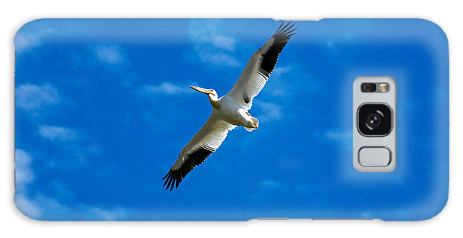 American Galaxy Case featuring the photograph American White Pelican by Marilyn Hunt