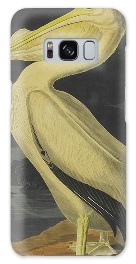 John James Audubon (after) American White Pelican (plate Cccxi) Galaxy S8 Case featuring the painting American White Pelican by MotionAge Designs
