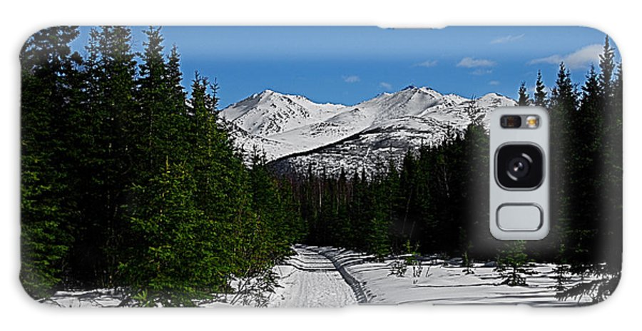 Anchorage Mountains White Trees Galaxy S8 Case featuring the photograph Anchorage Mountains by Galeria Trompiz