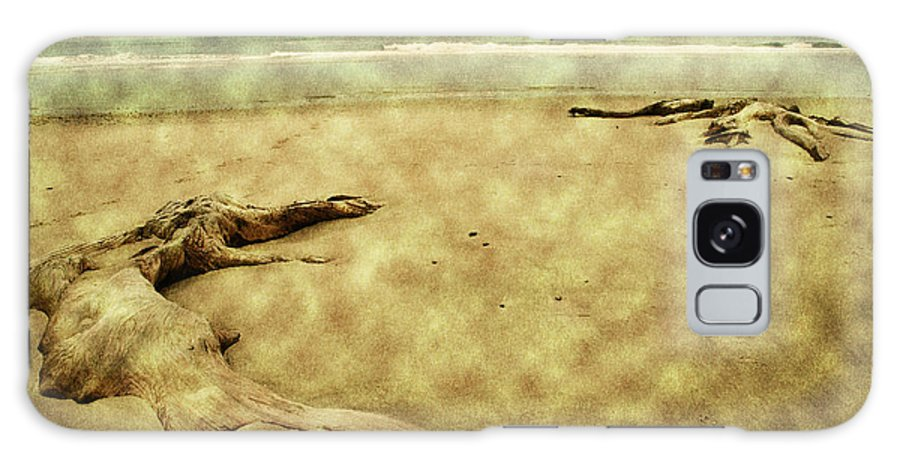 Oregon Beach Galaxy S8 Case featuring the photograph Ancient Tree Roots by Bonnie Bruno