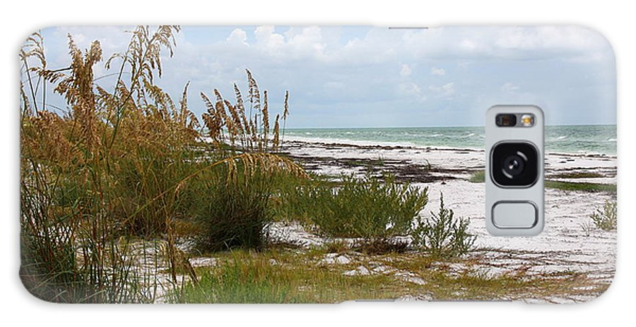 Beaches Galaxy S8 Case featuring the photograph Anclote Key Preserve by Barbara Bowen