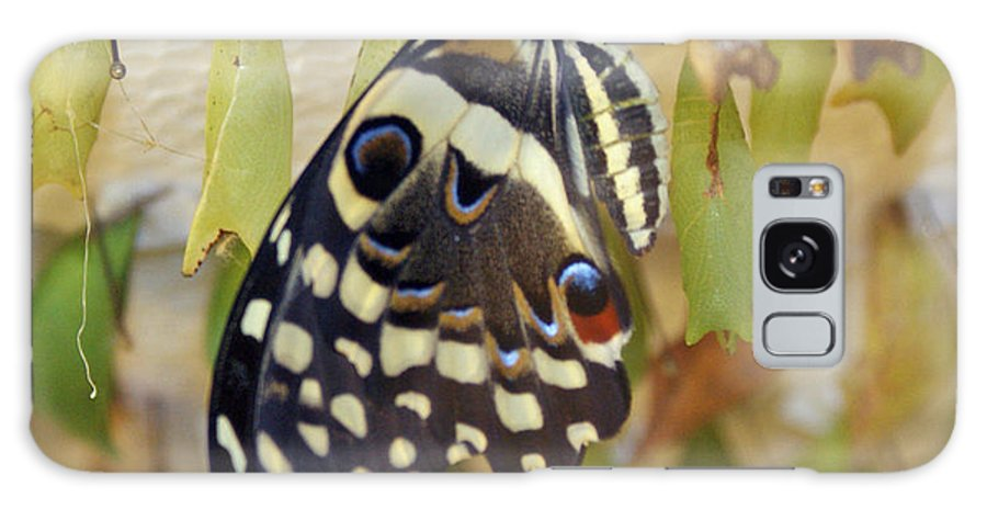 Butterfly Galaxy Case featuring the photograph And Life Begins by Shelley Jones