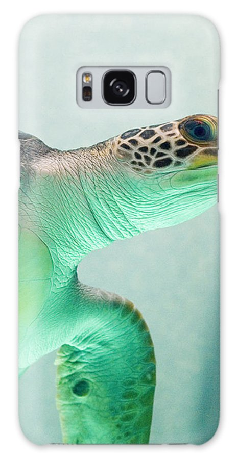 Skip Hunt Galaxy Case featuring the photograph Angel 2 by Skip Hunt