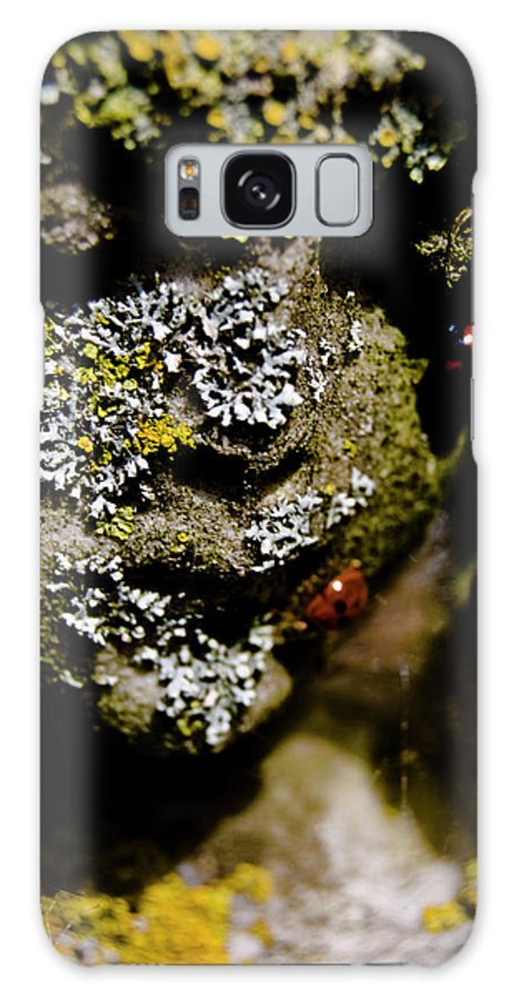 Angel Galaxy S8 Case featuring the photograph Angel Bugs by Grebo Gray