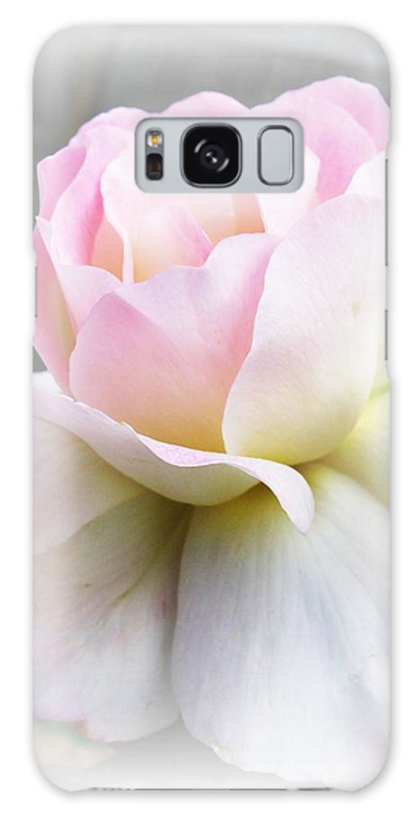 Rose Galaxy S8 Case featuring the photograph Angel by Carol Sweetwood