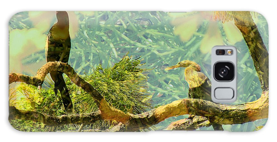 Anhingas Galaxy S8 Case featuring the photograph Anhinga Dreams by Rosalie Scanlon