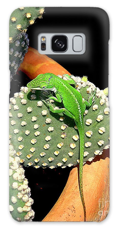 Nature Galaxy Case featuring the photograph Anole Hanging Out With Cactus by Lucyna A M Green