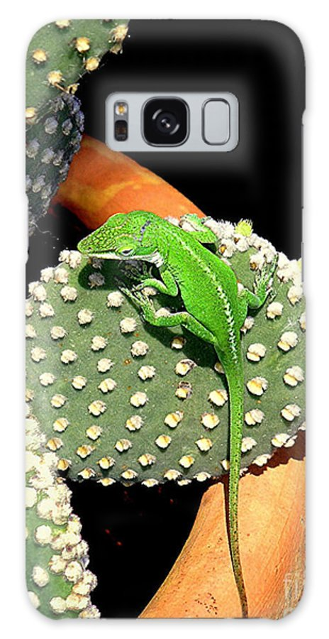 Nature Galaxy S8 Case featuring the photograph Anole Hanging Out With Cactus by Lucyna A M Green