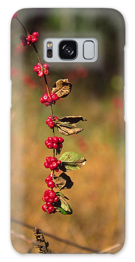 Fall Colors Galaxy Case featuring the photograph Another Year by Randy Oberg