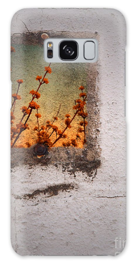Blossoms Galaxy S8 Case featuring the photograph April 4 2010 by Tara Turner