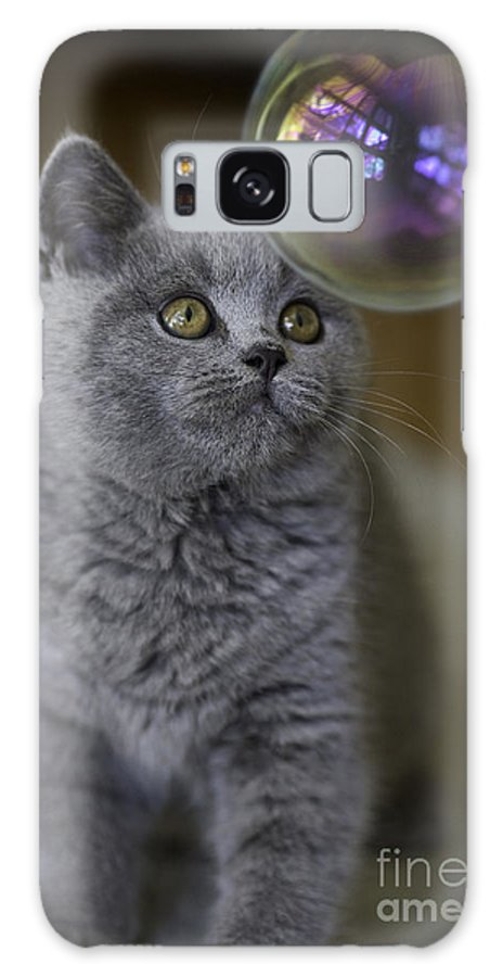 Cat Galaxy Case featuring the photograph Archie With Bubble by Sheila Smart Fine Art Photography
