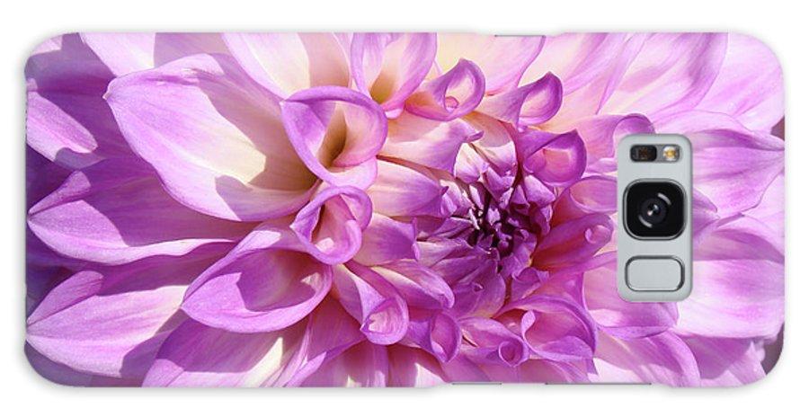 Dahlia Galaxy S8 Case featuring the photograph Art Prints Dahlia Flower Decorative Art Garden Baslee by Baslee Troutman