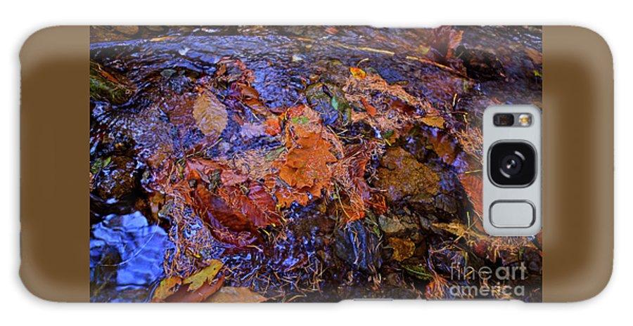 Nature Galaxy S8 Case featuring the photograph Arte Por Los Suelos Chapter Iv by Xabi Lobo