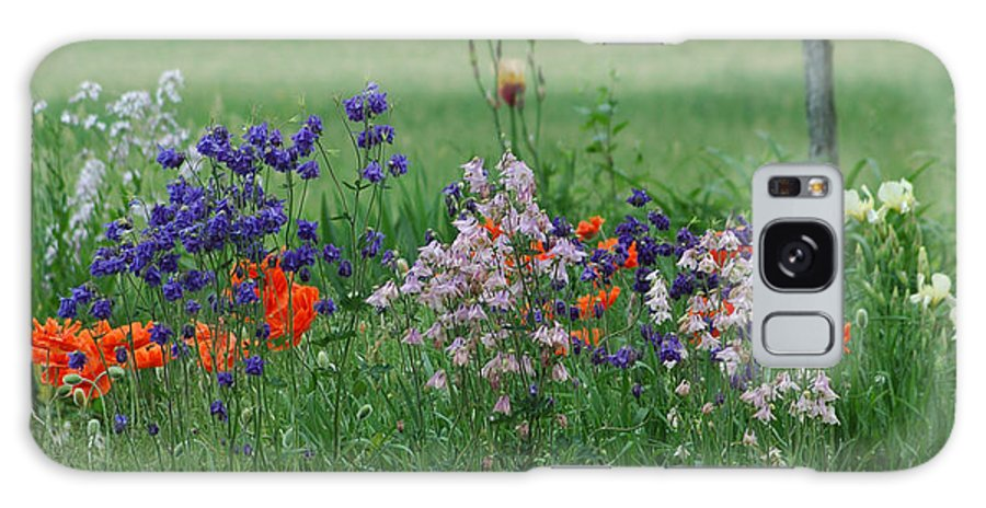 Dew Galaxy Case featuring the photograph Tiny Miracles by Linda Murphy