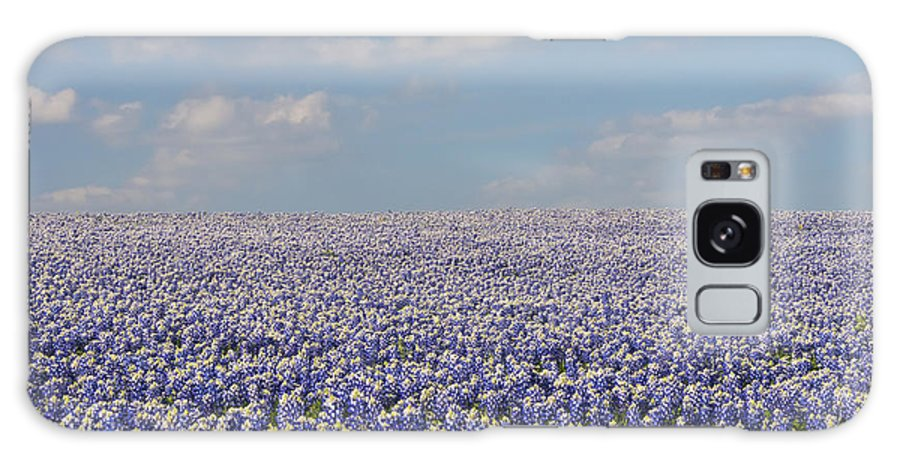 Muleshoe Bend Recreation Area Texas Bluebonnet Bluebonnets Flower Flowers Bloom Blooms Landscape Landscapes Spring Galaxy S8 Case featuring the photograph As Far As The Eye Can See by Bob Phillips
