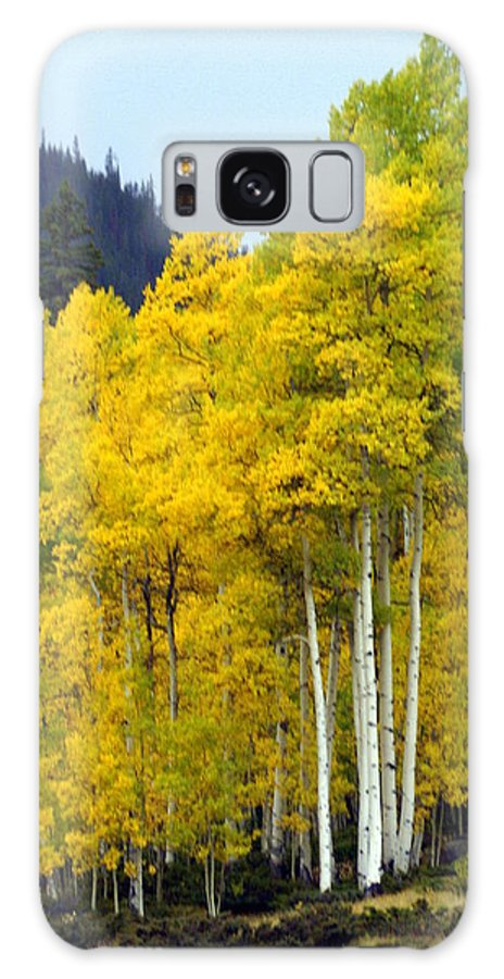 Fall Colors Galaxy S8 Case featuring the photograph Aspen Fall by Marty Koch