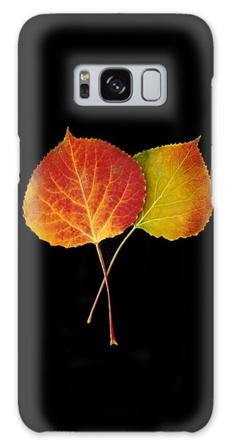 Leaves Galaxy S8 Case featuring the photograph Aspen Leaves by Carol Milisen