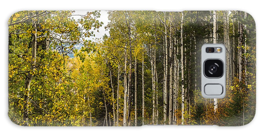 Idaho Galaxy S8 Case featuring the photograph Aspens In Autumn by Yeates Photography
