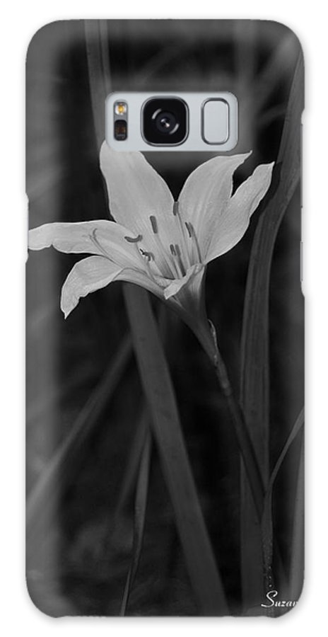 Atamasco Lily Galaxy S8 Case featuring the photograph Atamasco Lily II by Suzanne Gaff