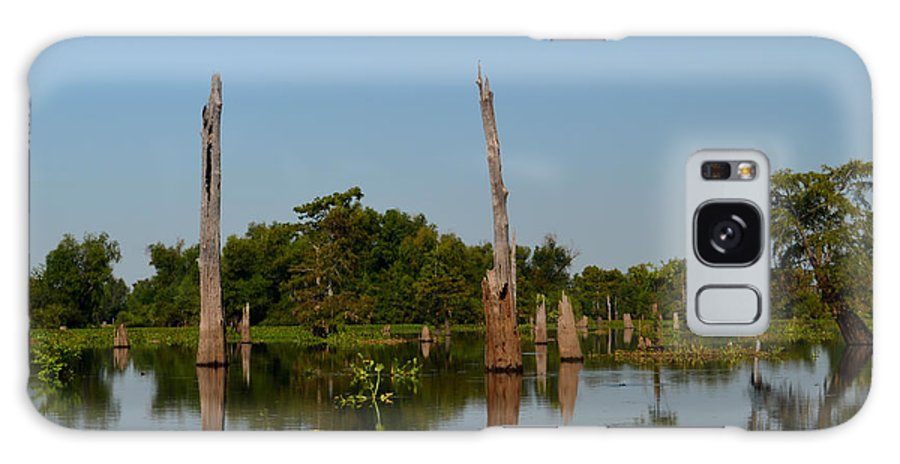 bald Cypress Galaxy S8 Case featuring the photograph Atchafalaya Basin 18 by Maggy Marsh