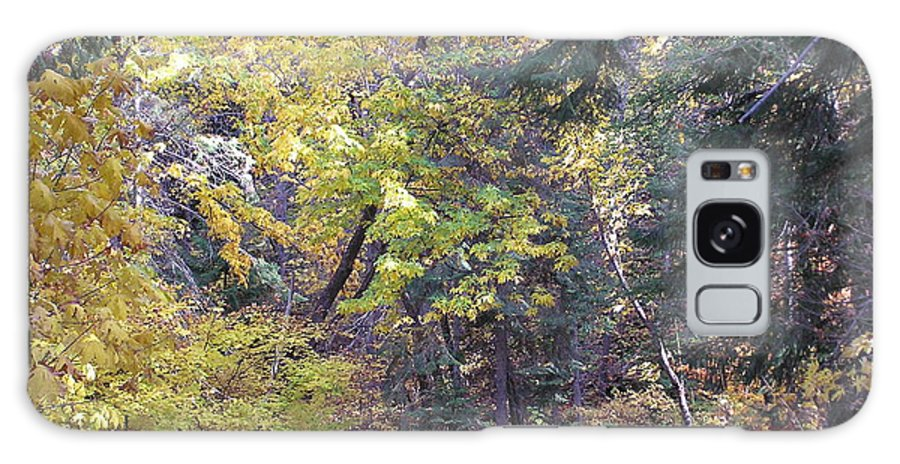Autumn Photographs Galaxy S8 Case featuring the photograph Autum Colors by Louise Magno