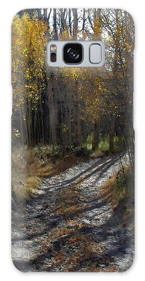 Aspens Galaxy S8 Case featuring the photograph Autum Path by Donald Hansen
