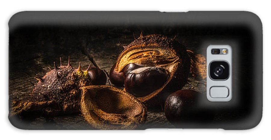 Nature Galaxy S8 Case featuring the photograph Autumn 2016 by Gabor Korf