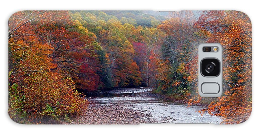 West Virginia Galaxy S8 Case featuring the photograph Autumn Along Williams River by Thomas R Fletcher