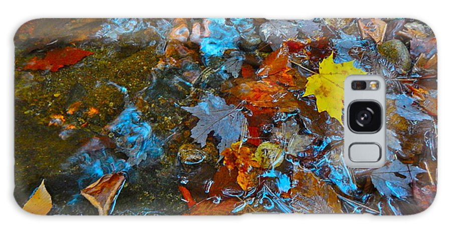 Autumn Landscape Galaxy S8 Case featuring the photograph Autumn B 2015 123 by George Ramos
